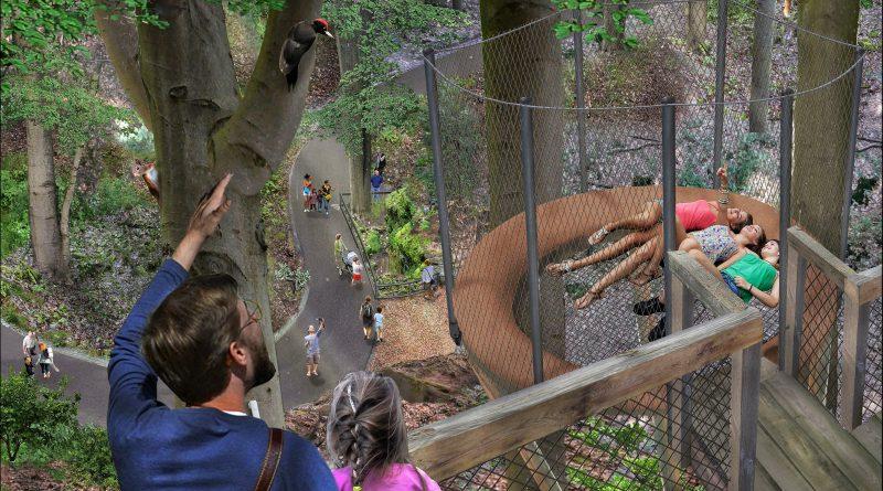 Tiergarten baut einen Waldpfad