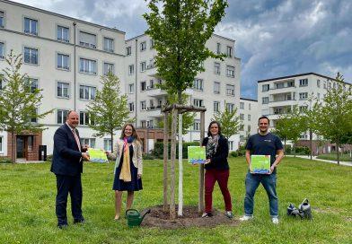 Rotary Club Nürnberg-Connect spendet drei Bäume